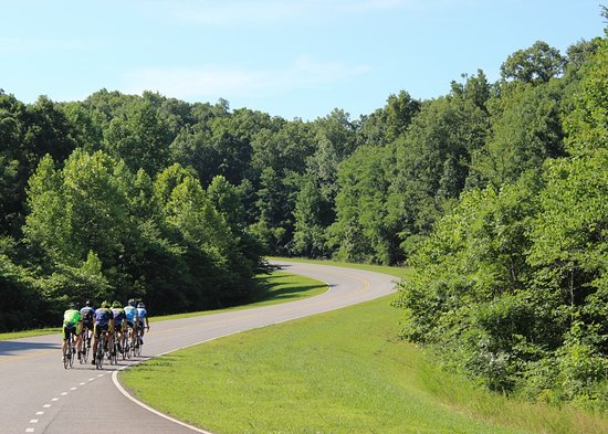 Brentwood, Теннесси: The Natchez Trace Parkway is the highlight of our Monday & Friday tours.