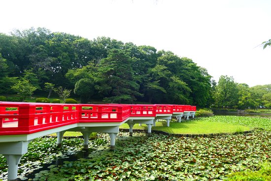 Iwatsuki Joshi Park