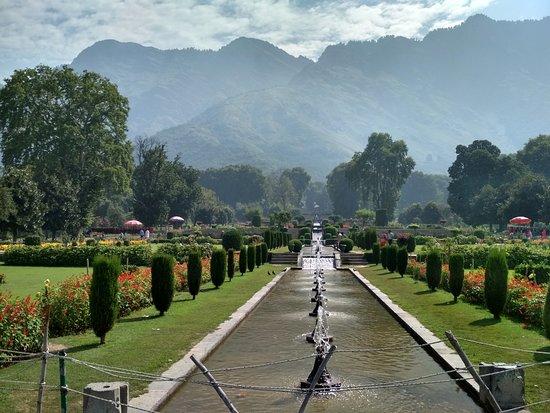 Mughal Gardens: Well laid garden