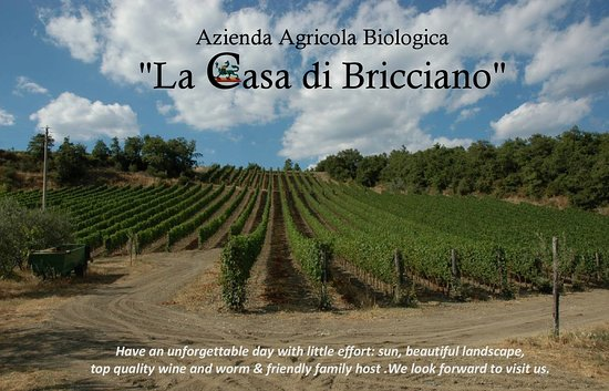 Gaiole in Chianti, Italija: Come to taste our  wines