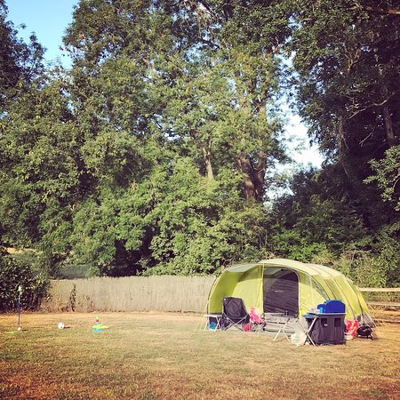 Saint Briavels, UK: Our lovely pitch