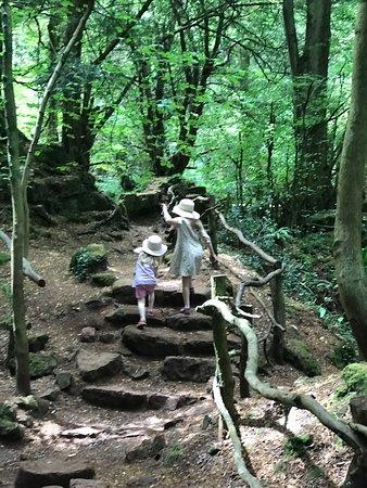 Saint Briavels, UK: Exploring Puzzlewood