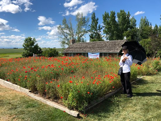 Nanton, Kanada: En Plein Air Arts Festival, July 22, 2018