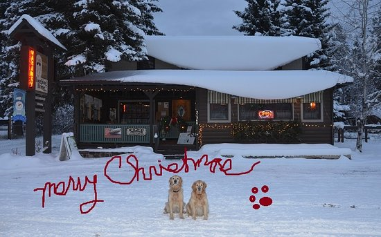Swan Lake, MT: From my family to yours...