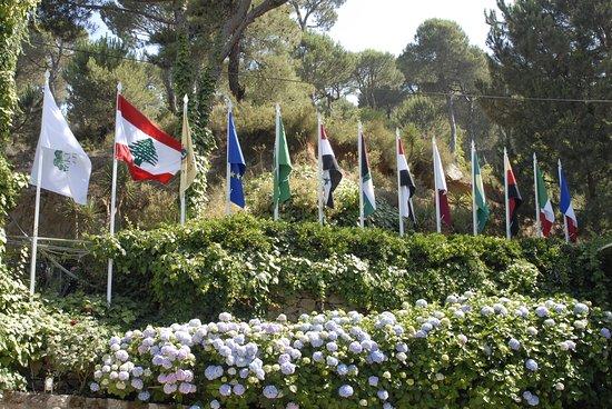 Bikfaya, Lebanon: Hydrangea garden, flags, and pine trees...