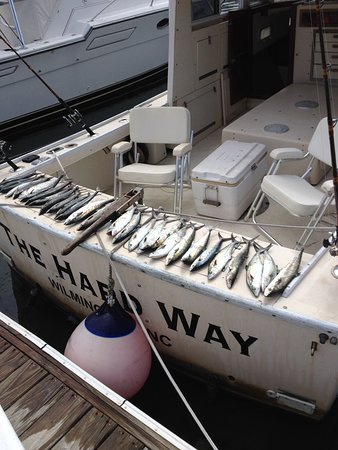 Wrightsville Beach, NC: Half day Spanish mackerel fishing