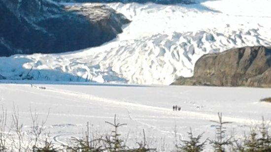 Glacier Taxi & Tours