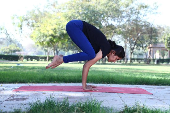 Jodhpur District, Indien: advance yoga poses form pranav yogshala trainer