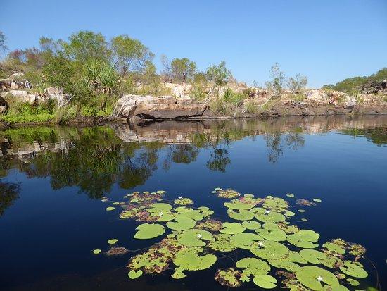 Mitchell Plateau, Australia: Water Hole