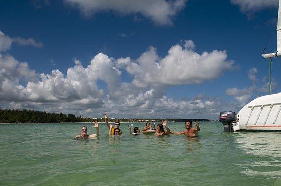 Punta Cana Catamaran Cruise and...
