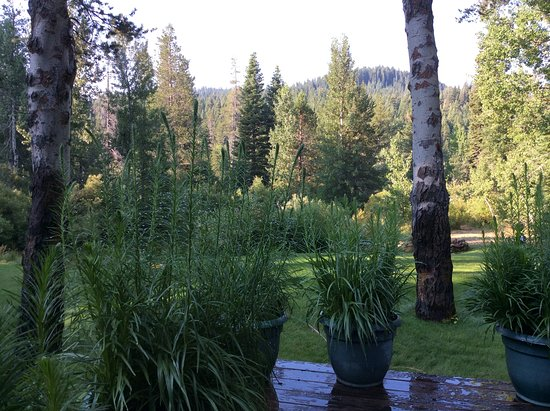 High Country Inn: From our deck