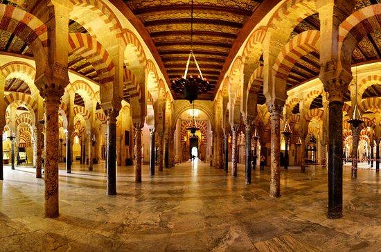 Excursión de un día a Córdoba y...