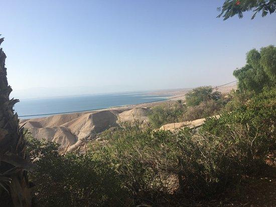 Kibbutz Ein Gedi ภาพถ่าย