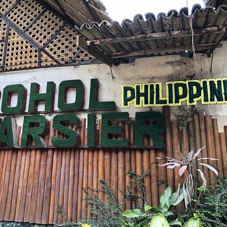 Philippine Tarsier Recreation Inc.: photo0.jpg