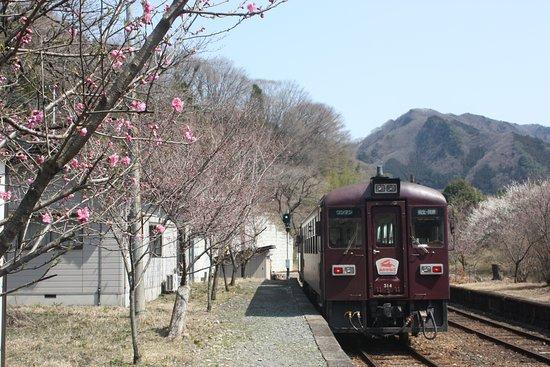Watarase Keikoku Railway