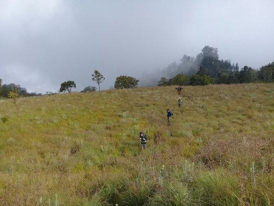 Jaya Trekker Tetebatu: IMG-20180525-WA0014_large.jpg