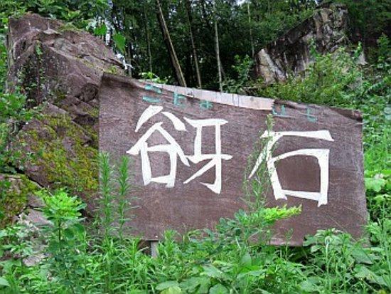 Nakatsugawa, Nhật Bản: 手づくりの看板