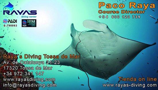 Raya's Diving