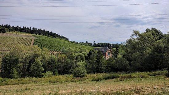 Staatliche Weinbaudomänen Trier