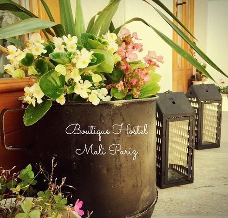 Grizane-Belgrad, Croatia: Gardening