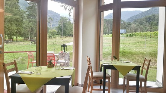 Azienda Agricola Bosc del Meneghi: Interni