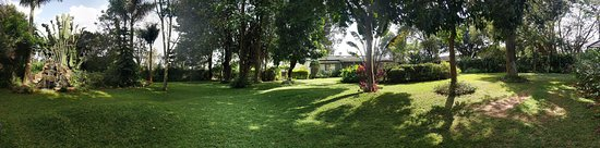 Nairobi, Kenya: A view from the garden sitting area