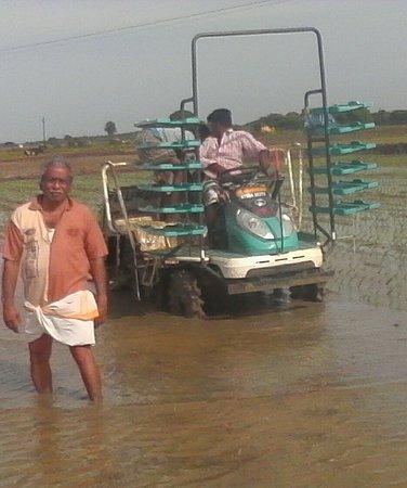 Thanjavur  Granary of Tamil Nadu,1  Thanjam + OOr,2  Than +