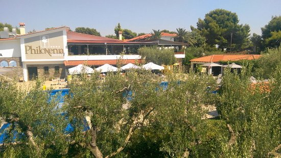 Psakoudia, Greece: View on the pool from block G (room 201)