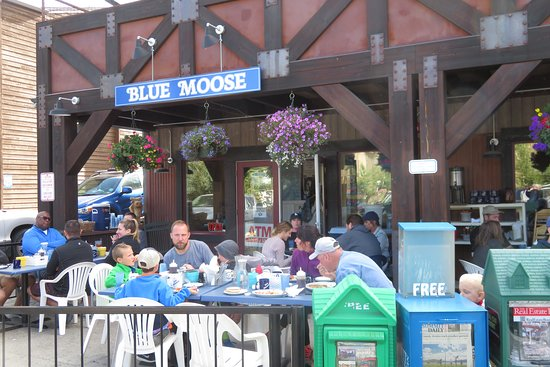 The Blue Moose: Blue Moose Patio