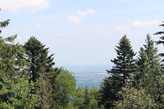 Swietokrzyski National Park: Swietokrzyski Park Narodowy #10