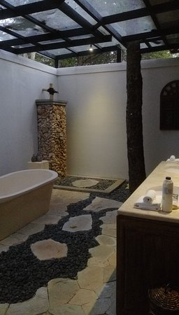 Outdoor bathroom, waterspout shower, trees growing in it too