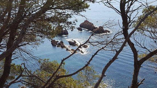 Camino de Ronda 사진