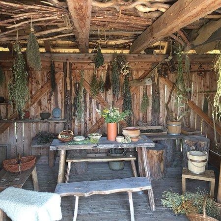 bilder fra oldenburg in holstein reisendes bilder fra oldenburg in holstein schleswig. Black Bedroom Furniture Sets. Home Design Ideas