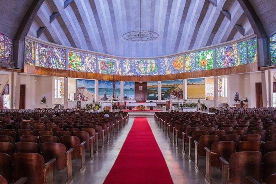 Catedral de Joinville - Sao Francisco Xavier