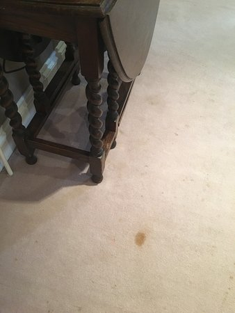 Cantley House Hotel : Dirty Carpets in room 45