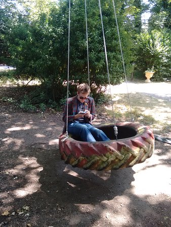 The Grove: Poetry on the tyre swing