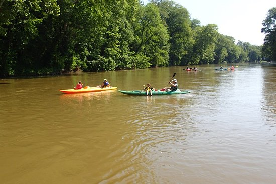 Athens, AL: Go kayaking, canoeing or paddle boarding on the beautiful Elk River