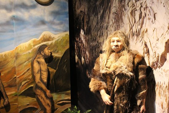 Centrum Neandertalczyka