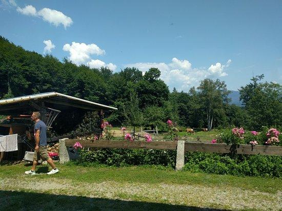 Madonna del Sasso, Italie: Agriturismo Barchetto