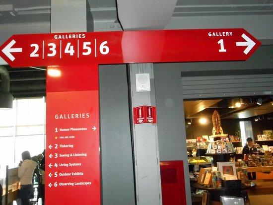 Exploratorium: 3 stuff