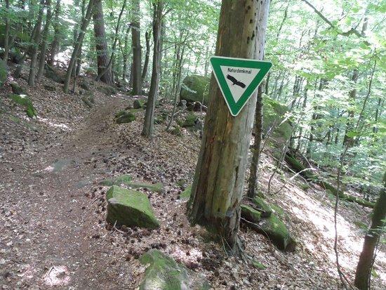 Das Naturdenkmal Fleischackerloch bei Landstuhl_large.jpg