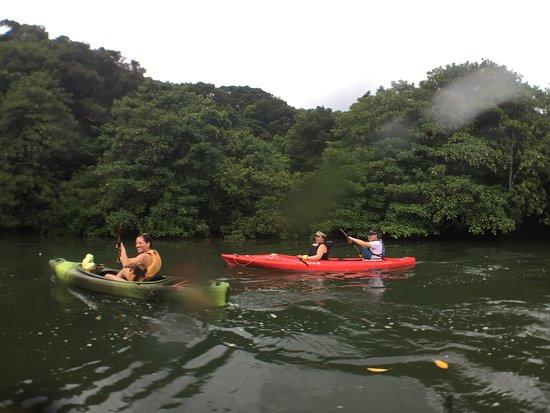 Iriomote Osanpo Kibun: Kayaking to Pinasara Falls, Iriomote