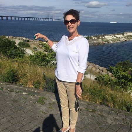 Oresund Bridge: Celebrating the crossing of the great bridge between Copenhagen and Sweden!