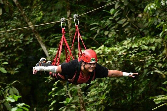 Canopy Safari: Superman Zip