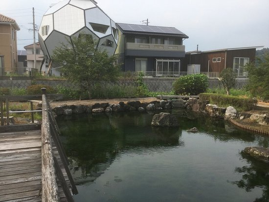 Hariyo Park