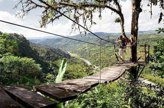 Selva tropical Mindo con opción de...