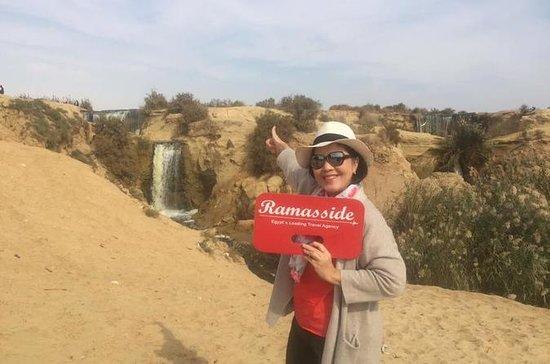 Fayoum Oasis & Wadi Al Rian Day Tour...