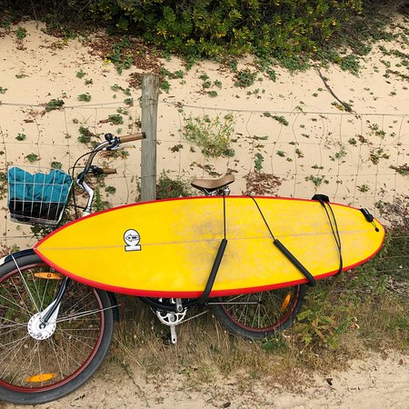 7c19322c86eb Jerry Bike Rental (Seignosse) - 2019 All You Need to Know Before You ...