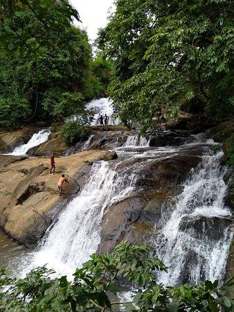 Pallickathodu, Индия: IMG_20180729_153207_large.jpg