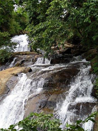 Pallickathodu, Indien: IMG_20180729_152715_large.jpg